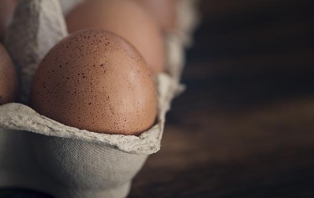 egg-1265735_640